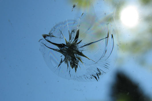 Repair for windshield chips in St. Helena Island and Beaufort County